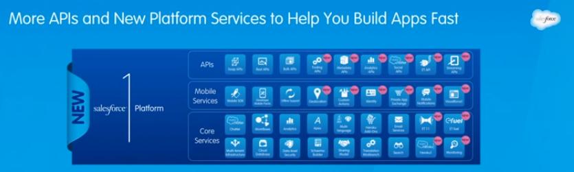 salesforce 1 platform API